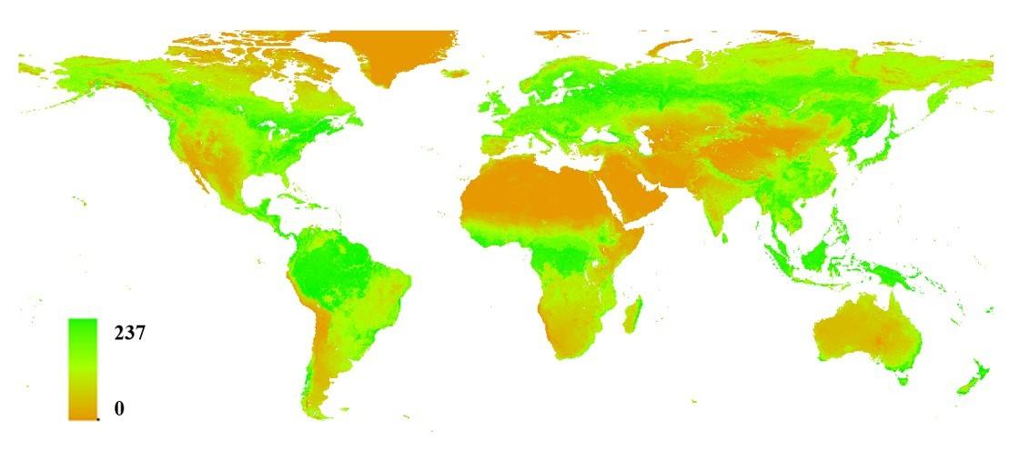 光合有效辐射吸收比FAPAR_modis(1km)